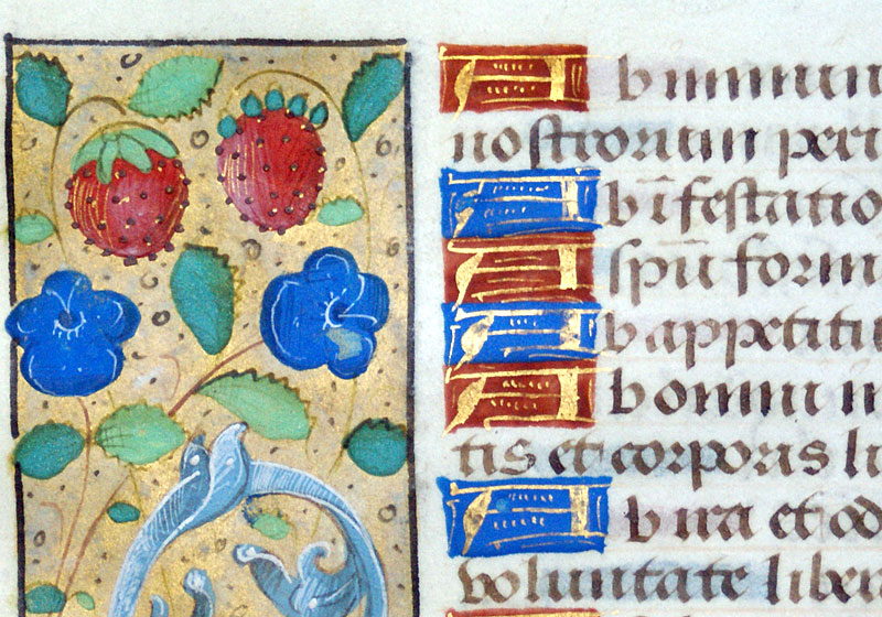 Book of Hours Leaf with unusual Borders - Litany - c 1490-1510