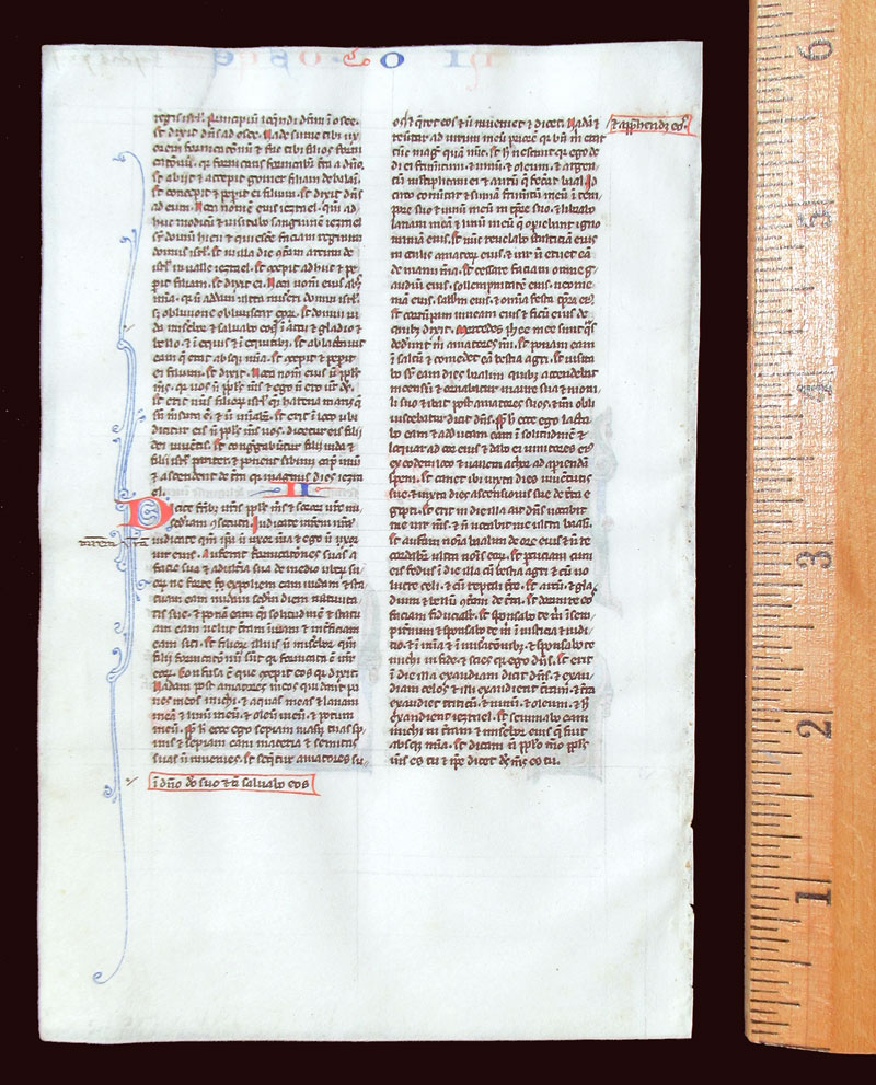 c 1240-50 Medieval Bible Leaf - Daniel in Lion's den